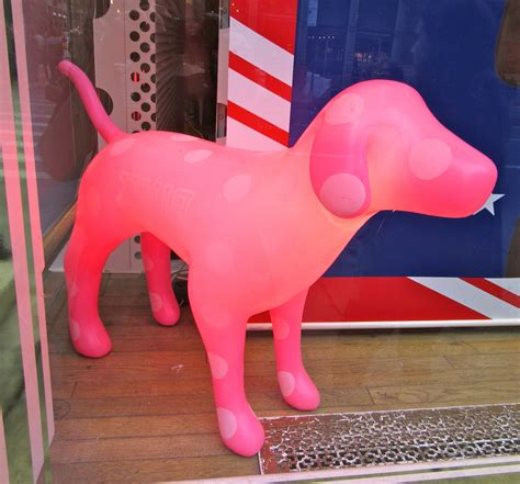 pink s dogs pink the worleygig