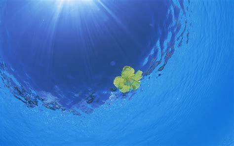aquamarine wallpaper  desktop wallpaperwiki