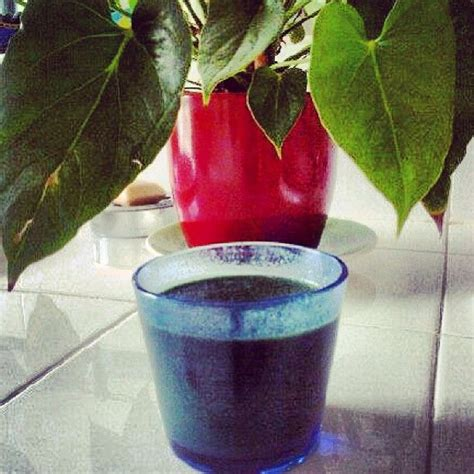 Detox Plant Based Diet by 30 Best Detox Plant Based Diet Images On