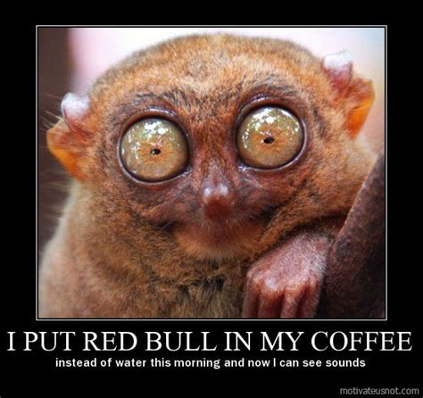 I Can See Sounds Meme - i put red bull in my coffee instead of water this morning