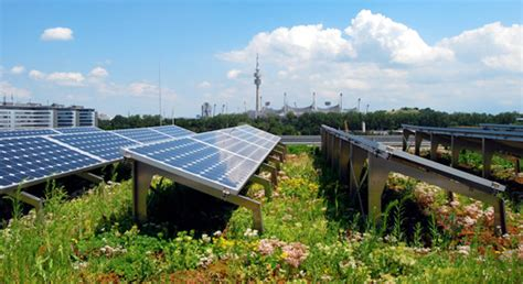 green roofs with solar panel greenscape