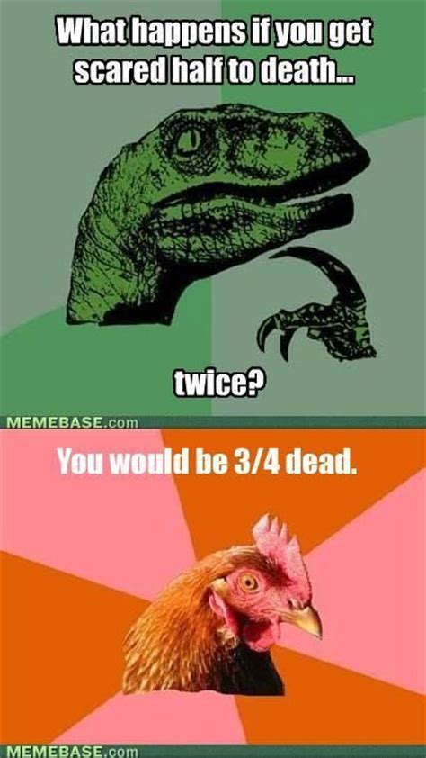Meme Jokes - anti joke chicken meme funny pinterest