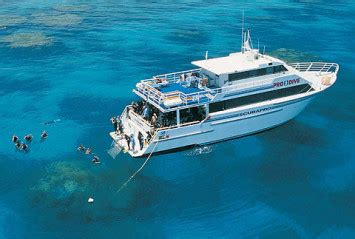 pro dive cairns pro dive cairns great barrier reef liveaboard dive trips