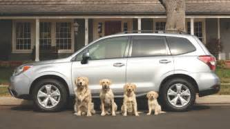 subaru commercial with dogs subaru commercial 2015 newhairstylesformen2014
