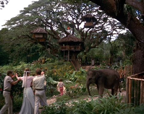 real treehouse kevin kidney original swiss family robinson tree found