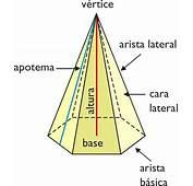 Las Caracteristicas De Los Prismas Y Piramides  Www
