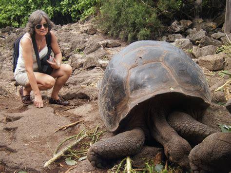 imagenes animales galapagos islas galapagos 13 las tortugas gigantes ecuador estar