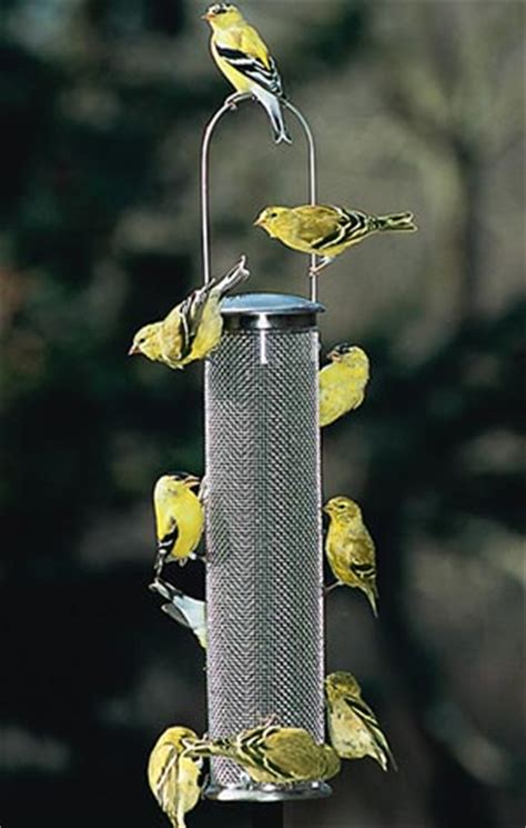wild birds unlimited what bird seeds goldfinches like best