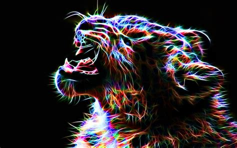 colorful wallpaper animal leopard computer wallpapers desktop backgrounds