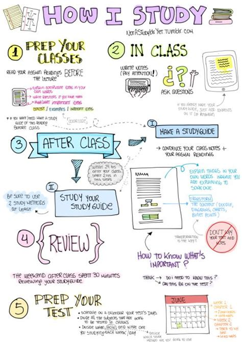 15 best ideas about study tips on college study tips university organization and