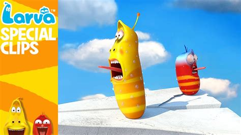 film larva new york official flying larva 1 min fun clips from animation