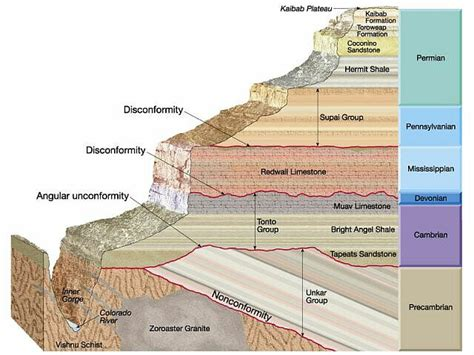 cross section geology definition types of unconformities geology in