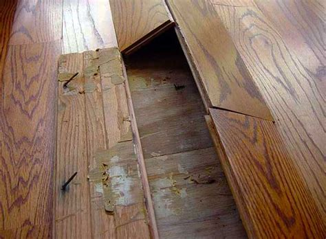 Hardwood Floor Buckling Buckled Hardwood Floors Analysis Why Fixes