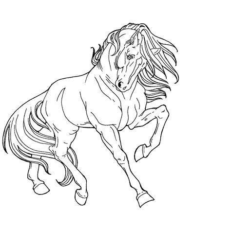 printable animal line drawings free line art proud horse by applehunter on deviantart