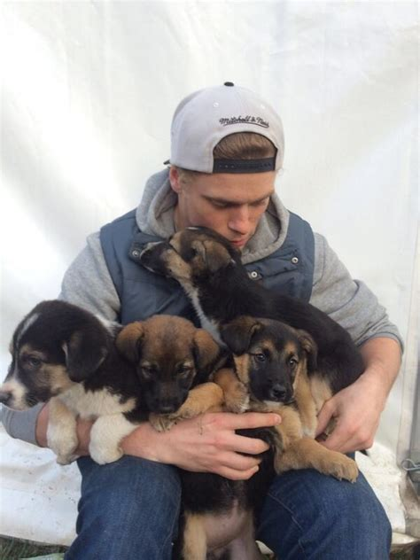 saving puppies olympian gus kenworthy and a russian billionaire are saving the stray dogs in sochi