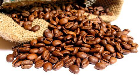 Machine A Cafe En Grains 4600 by Moulu En Capsules Ou En Grains Comment Choisir Caf 233