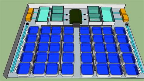tilapia hatchery layout tilapia recirculation aquaculture system design youtube