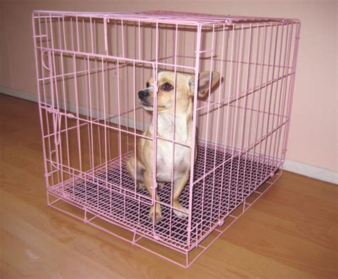 puppy cages puppy crate puppy