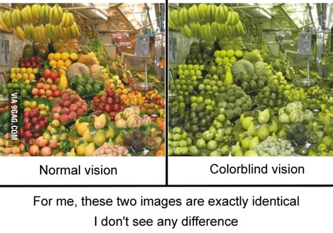 do blind in color as a colorblind this is how i see the world 9gag
