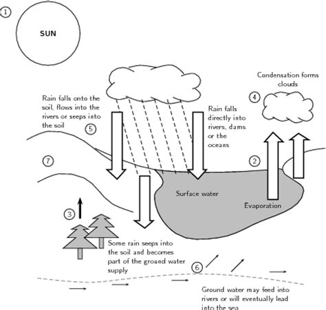 label the water cycle diagram worksheet 11 best images of water cycle worksheets middle school