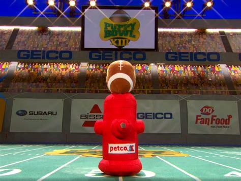 puppy bowl 2017 highlights here s a 360 vr teaser of the upcoming puppy bowl xii