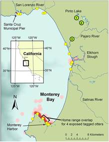 monterey bay 2015 condition report update state of