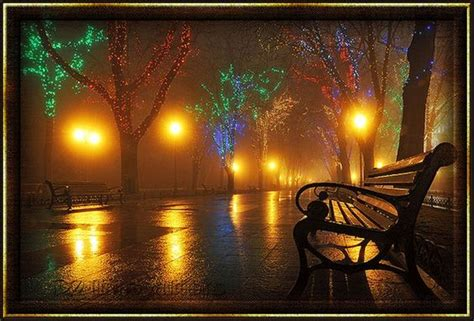 night bench pinterest the world s catalog of ideas