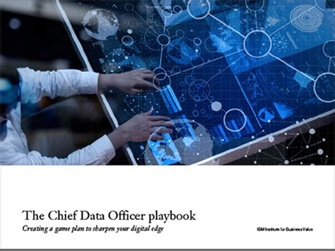 ibm the chief data officer playbook