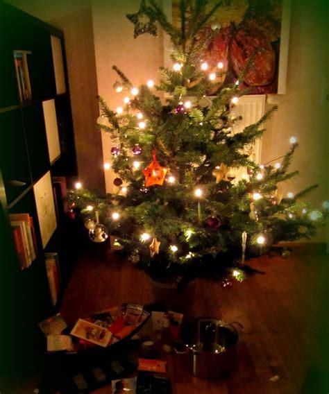 ein weihnachtsbaum auf reise ein erfahrungsbericht