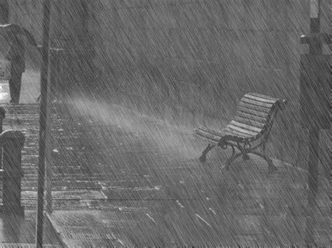 imagenes blanco y negro lluvia 17 im 225 genes con movimiento de lluvia