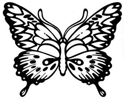 Detailed Butterfly Coloring Pages