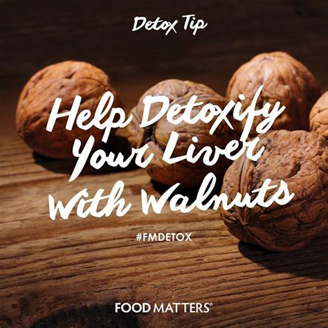 Food Matters Liver Detox by 17 Best Images About Walnuts On Health Cells