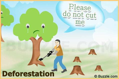 do not cut the tree to get the fruit causes of the greenhouse effect that are undeniably true