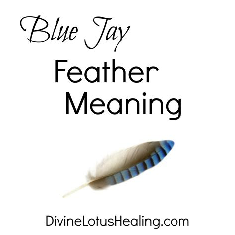 blue jay tattoo meaning blue feather meaning