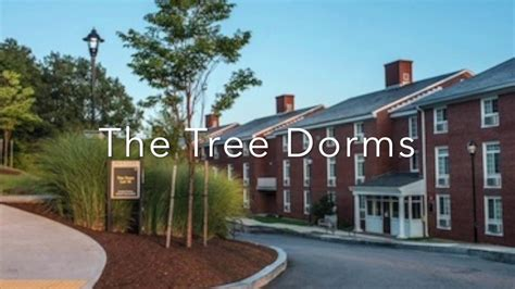 bentley college dorms bentley university freshmen housing options youtube