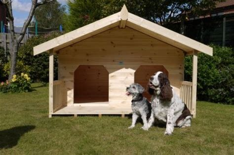 two dogs in a house luxury double dog kennel summerhouse for 2 large dogs