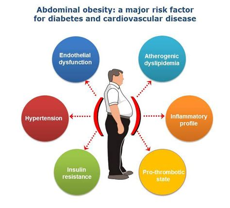 weight management definition obesity diabetes and disease excellent slimming