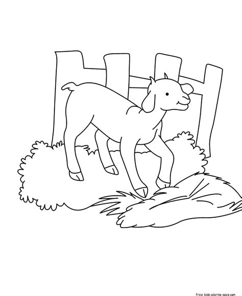 free coloring pages of baby goat