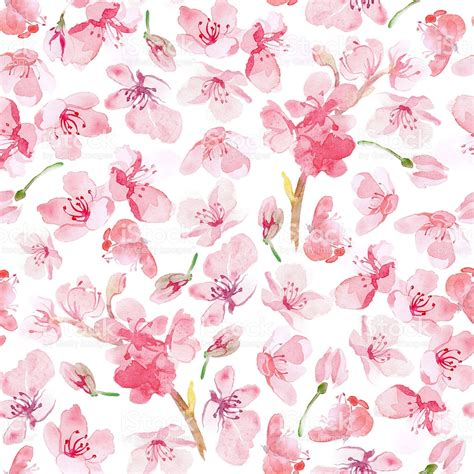 Flower Pattern Stock Illustrations | sakura flower pattern stock vector art more images of