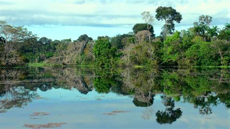 3d amazon amazon 3d trailer in the heart of wild nature youtube