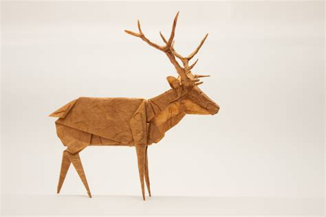 How To Make A Paper Deer - images deer origami paper