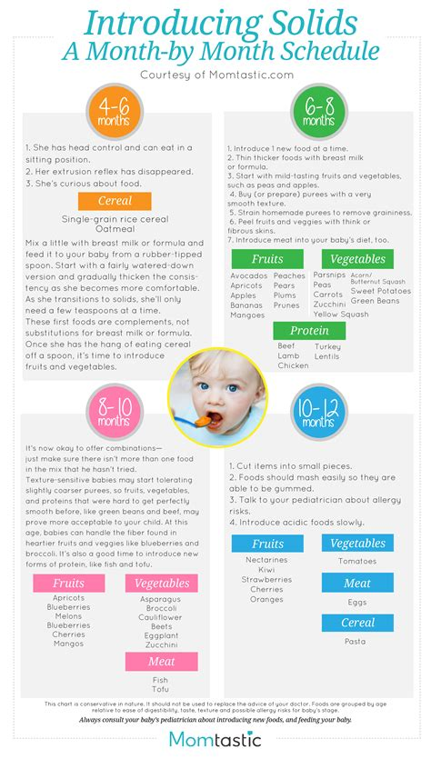 how to introduce to baby introducing solids a month by month schedule free printable