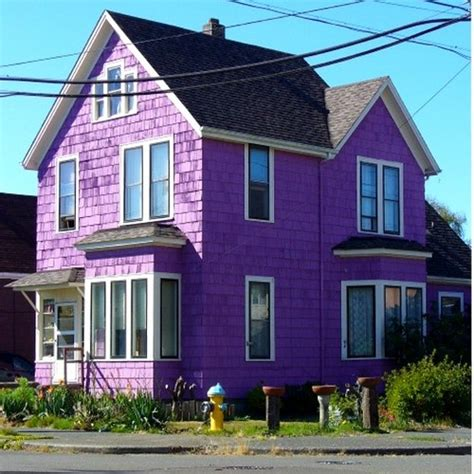 purple house purple houses the world of kitsch
