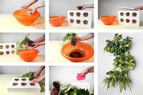Pflanzenbild Selber Machen by Pflanzen Bilderrahmen Zum Pflanzbilder Selber Machen