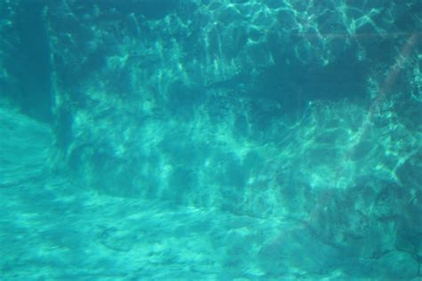underwater wallpaper tumblr underwater background 2 by dollieflesh stock on deviantart