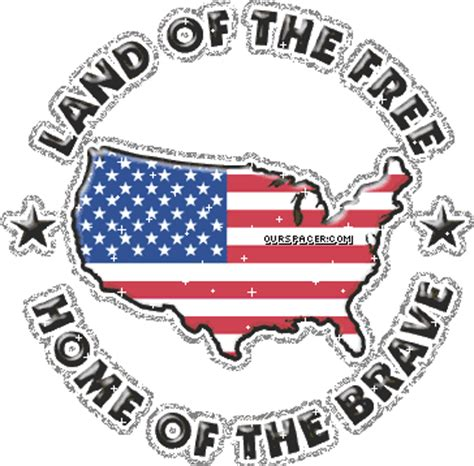 bald eagle america the land of the free and the home of