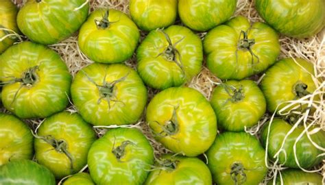 fruits rungis le secteur fruits et l 233 gumes du march 233 de rungis
