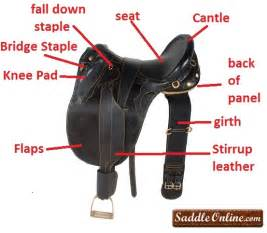 Comfortable Western Saddles The Differences Between Riding Styles English Vs
