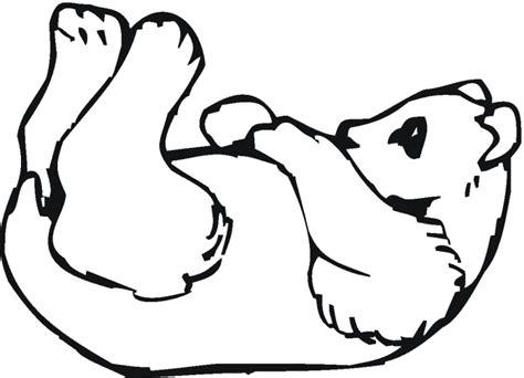 baby panda coloring pages 23145 bestofcoloring com