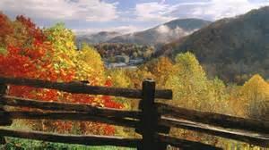 Foliage Plants Definition - gatlinburg near great smoky mountains np tennessee usa widescreen wallpaper wide